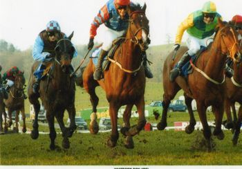 Whitford Don - driving finish at Chepstow